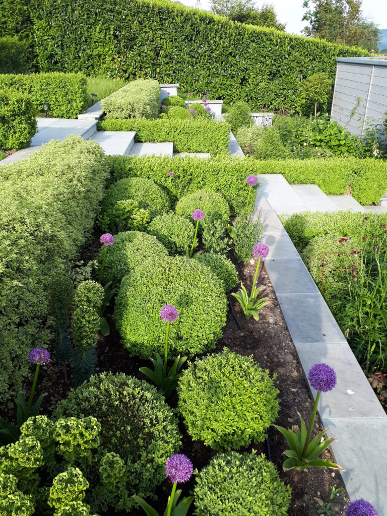 Box Topiary For Style In The Garden